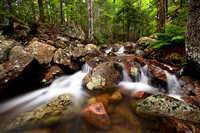Hadlock Brook - Waterfall - Acadia National Park - Maine