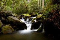 Roaring Fork - Great Smoky Mountains National Park