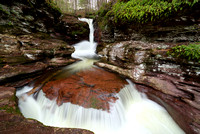 Adams Falls - Ricketts Glen State Park - Waterfall
