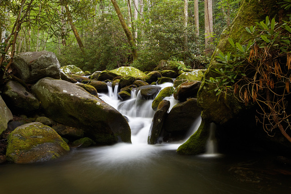 Tim devine photography great smoky mountains and for Roaring fork smoky mountains