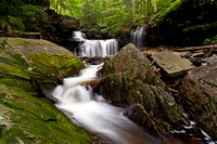 Ricketts Glen and Surrounds