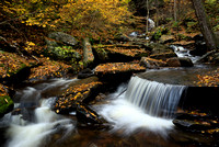 Autumn in Glen Leigh - Ricketts Glen