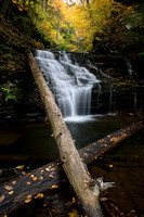 Mohican Falls - Ricketts Glen State Park - Waterfall